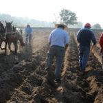Alertan por iniciativa de Ley que pretende privatizar las semillas mexicanas